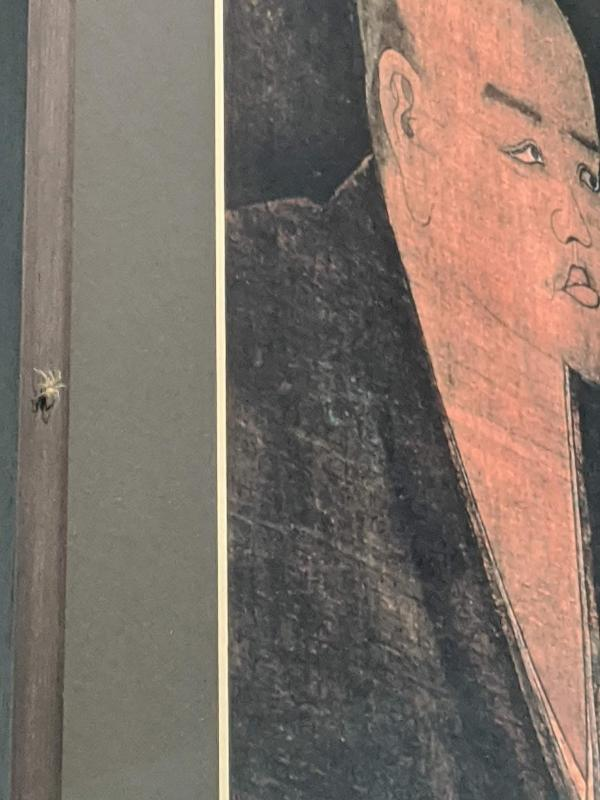 Spider on Dogen portrait, photograph by Ven. Mishin godo