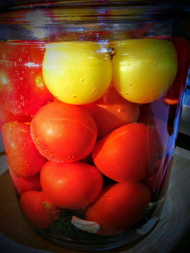 Jar of fermenting tomatoes