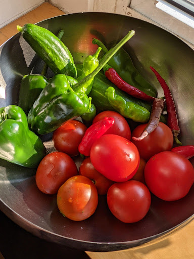 Garden tomatoes and peppers, Photograph by Ven. Mishin godo