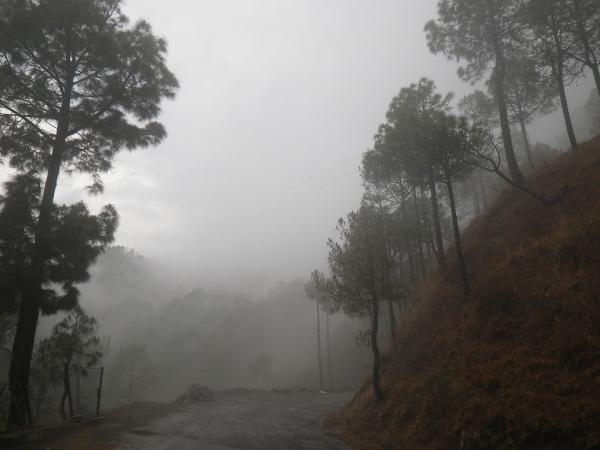 Foggy mountain road - photograph by Ven. Chunen Rampal angya