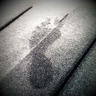 Roshi's foot print in the snow