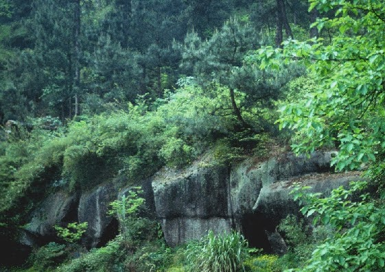 Shitou's stone ledge